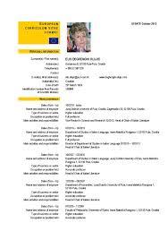 cv format europass professional resume cover letter sample cv format europass cv europass documents europass image european curriculum vitae format cv