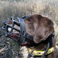 Baskerville Muzzle Size Chart Baskerville Ultra Dog Muzzle Comfortable Basket Muzzle