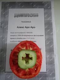 Проект диплома ФотоКто в номинации Домашнее консервирование  Проект диплома ФотоКто в номинации Домашнее консервирование