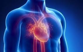 Imagini pentru insuficienta cardiaca