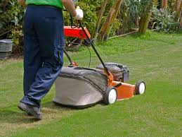 to lawn and garden lawn care