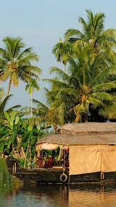 16 Resort Clipart kerala coconut tree ...