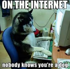 on the internet nobody knows you re a cat. Unique The Image  427561  On The Internet Nobody Knows Youu0027re A Dog Know Your  Meme With The Internet You Re A Cat R