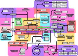 Iubmb Nicholson Metabolic Pathways Chart Allmistry Metabolic Pathways Poster Aldrich