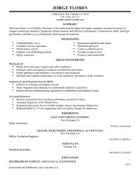 Resume Summary Examples Entry Level Customer Service Therpgmovie