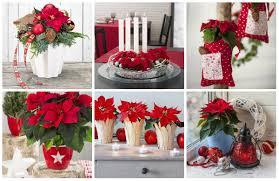 Wunderschöne Festliche Weihnachtsstern Dekoration