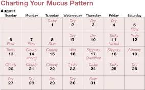 Natural Family Planning Mucus Chart Pin On Natural Family Planning