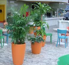 Tuincafe Zwolle Overheerlijke Aanbiedingen In Tuinland Zwolle