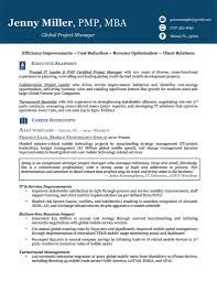 Executive Resume Template Word Resume Executive Level Resume 100 Resume Functional Executive 11