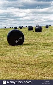 Black Silage Bags In A Field Near Stonehenge Stock Photo 110380422