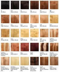 Remy Colour Chart Beauty Works Hair Extensions Colour Chart Lajoshrich Com