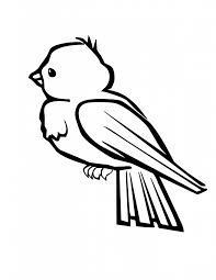 Small Picture Humming Bird Coloring Pages Hummingbird Coloring Page For Free