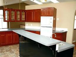 coffee color kitchen cabinets change kitchen cabinet color change your kitchen cabinets color inspirational coffee color