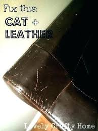 cat scratches on leather couch leather couch scratch repair surprising repair scratched leather sofa how to
