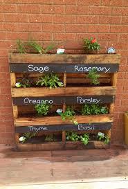 plant box garden ideas photograph
