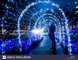 Botanical Gardens Christmas Lights 2018 Vancouver Canada 30th Nov 2018 A Visitor Looks At The