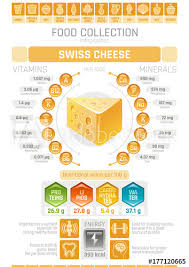 Food Infographics Poster Swiss Hard Cheese Dairy Vector