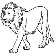 Free jungle coloring pages to print for kids. Top 10 Free Printable Jungle Animals Coloring Pages Online