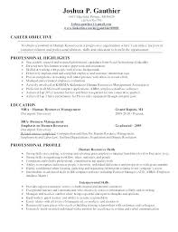 Resume Mission Statement Magnificent Resume Objective Statement Entry Level Human Resources Tips For An