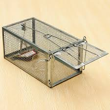 Bird Cage Trap Design Us 11 3 Reusable Hamster Cage Mice Rat Control Catch Bait Live Trap Rodent Animal Mouse In Bird Cages Nests From Home Garden On Aliexpress