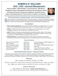 Ceo Resume Template Stunning Ceo Resume Sample Example Resume Page 48 Ceo Cv Sample Word