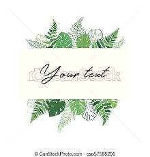Card Outline Vector Card Template With Fern And Monstera Vector Template