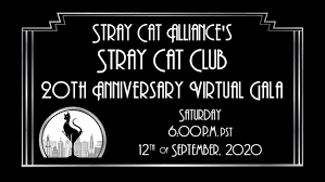 <b>Stray Cat</b> Alliance » Building a No Kill Nation One Stray at a Time