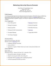 9 Intern Resume Example Skills Based Resume