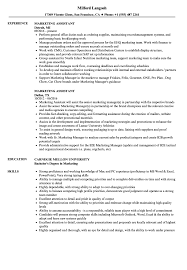 Sample Resume For Marketing Job Marketing Assistant Resume Samples Velvet Jobs 96