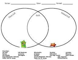 Comparing Animal And Plant Cells Venn Diagram Claim Evidence Reasoning To Compare Plant And Animal Cells Tpt