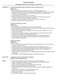 Internship Resume Examples Training Intern Resume Samples Velvet Jobs 42