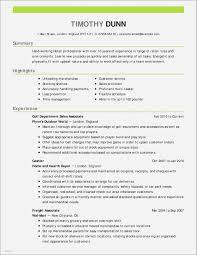 Sample Resume For Aesthetic Nurse Awesome Director Marketing Resume