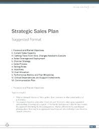 Online Sales Business Plan Direct Sales Business Plan Template Free
