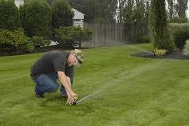 Image result for lawn sprinkler maintenance