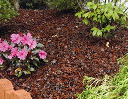 Is rubber mulch a good idea to stop weeds in the landscape?: Gardening Q&A  with George Weigel | PennLive.com