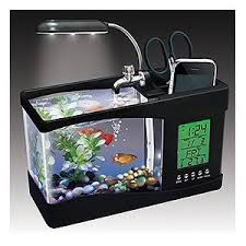 office desk aquarium.  Aquarium Little Fish Tank To Keep At The Office Desk Cool In Office Desk Aquarium F