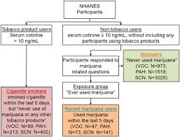 Marijuana In Urine Chart Category Chart For Identifying Nonusers Recent Marijuana