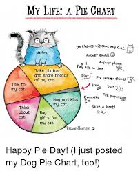 My Life A Pie Chart Do Things Wit Nout M Me First Anşwer