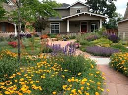 Backyard Landscaping Designs Interesting Drought Tolerant Front Yard Design Ideas Front Yard House R Fort Co