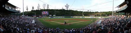 Smokies Baseball Stadium Seating Chart Smokies Park Tennessee Smokies