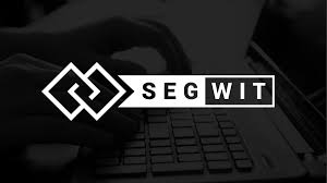 Segwit Adoption Tapers Off After Rapid Early Growth The Block
