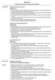 Category Analyst Sample Resume Category Analyst Resume Samples Velvet Jobs 2