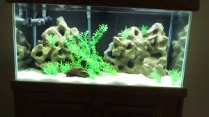 diy fake texas holey rock aquarium background you fish tank beautiful images