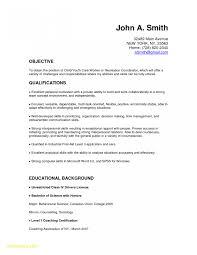 Good Caregiver Resume Sample Caregiver Resume No Experience New Child Care Resume Sample Best 41