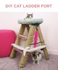 diy cat s diy cat ladder fort tips and tricks ideas for cat beds