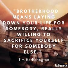 Brotherly Love Quotes Gorgeous Top 48 Quotes On Brotherhood And Brotherly Love With HQ Images