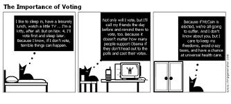 com the importance of voting the importance of voting