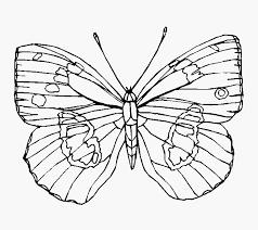 Kleurplaat Bloemen En Vlinders Voorbeeld Vlinder Kleurplaten Uniek