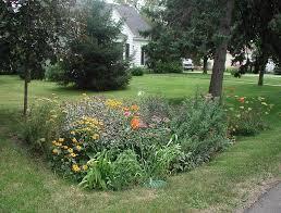 rain gardens ocean county soil