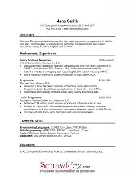 Awesome What Is Chronological Resume Contemporary Simple Resume